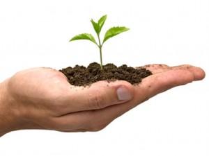 others-fertilizers
